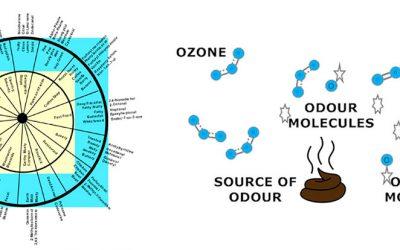 Конверсии Озон